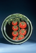 Tomato Platter by Julie and Tyrone Larson